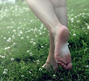 aardegroet yoga