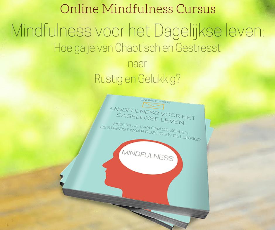 Online Mindfulness cursus